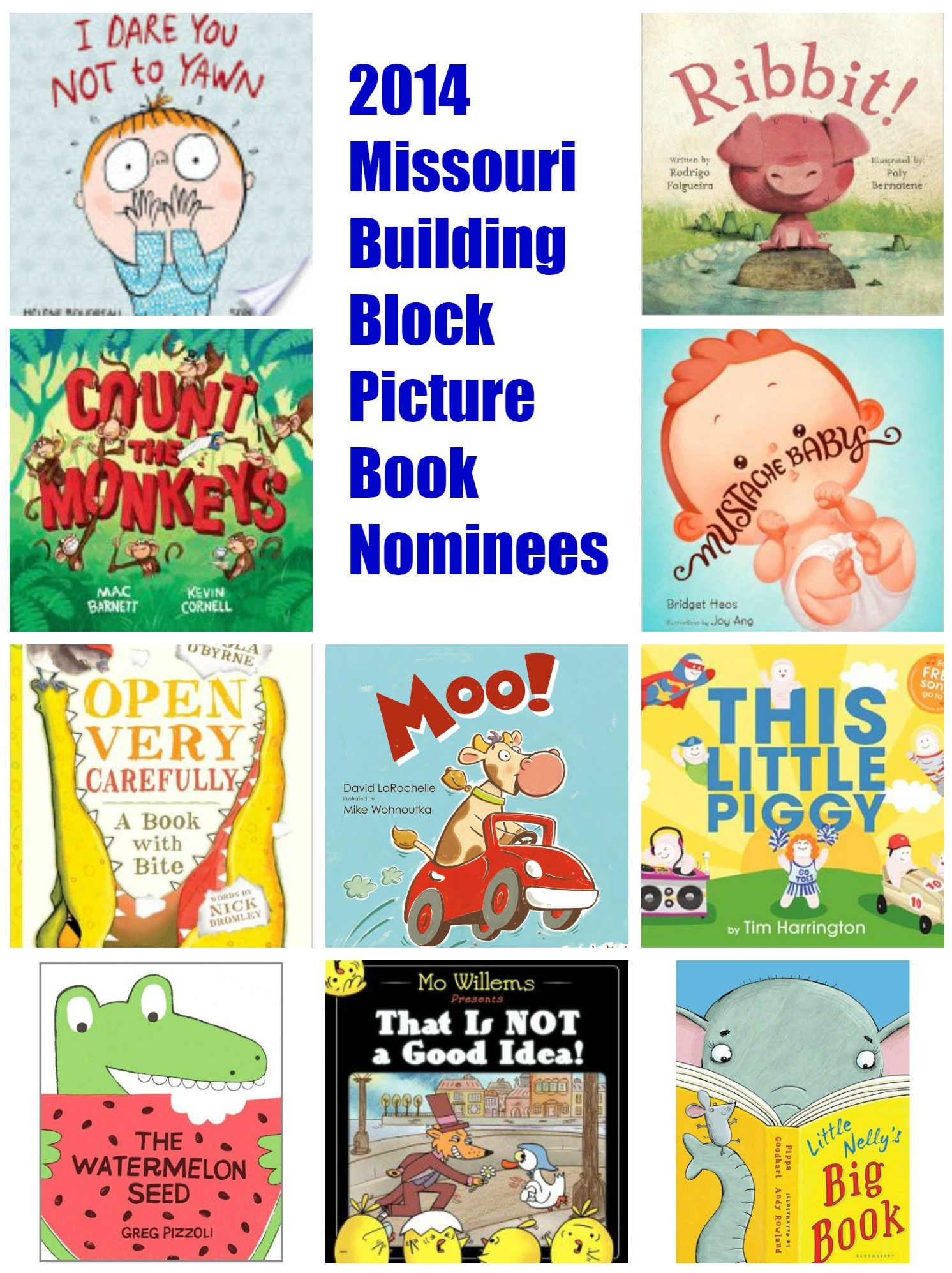 Read Them All Missouri Building Block Picture Book
