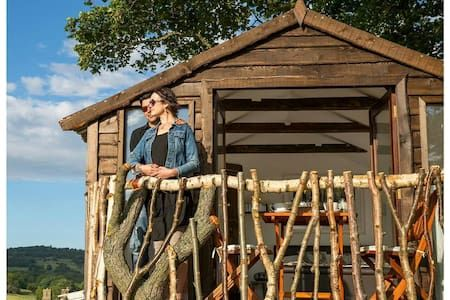 The Top 20 Treehouses for Rent in the United Kingdom - Airbnb ...