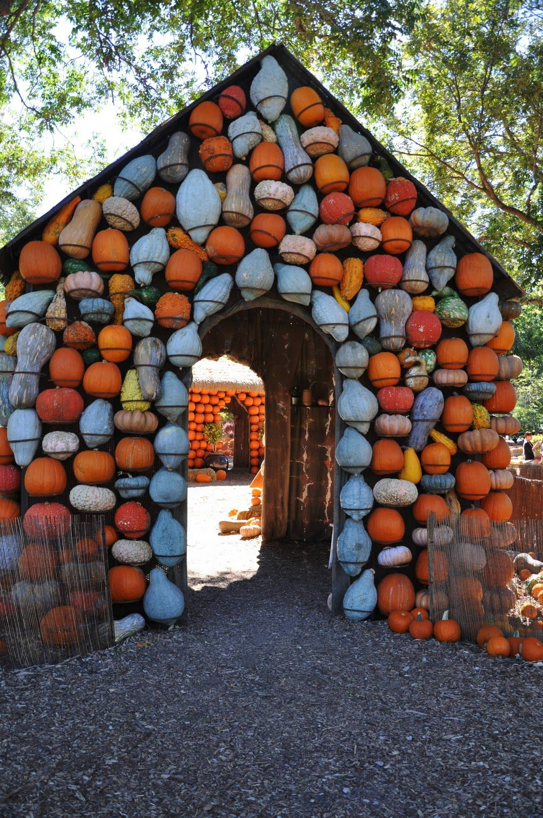 Playhouse covered in the gourds you grow dirt and grit - Botanic gardens pumpkin festival ...