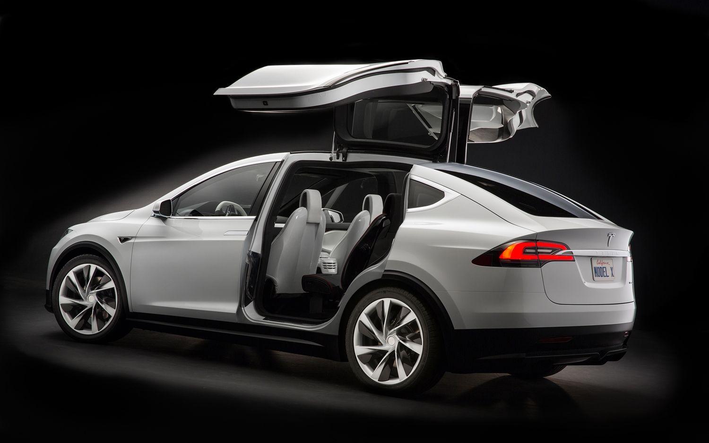 Falcon Doors -Tesla-