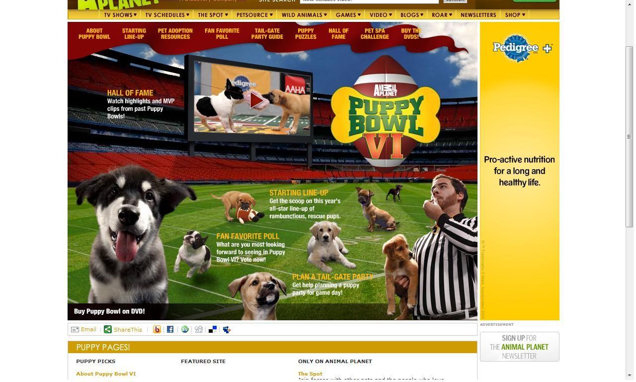 Puppy Bowl 6 at Shea Stadium Pet spa, Tv schedule, Puppies