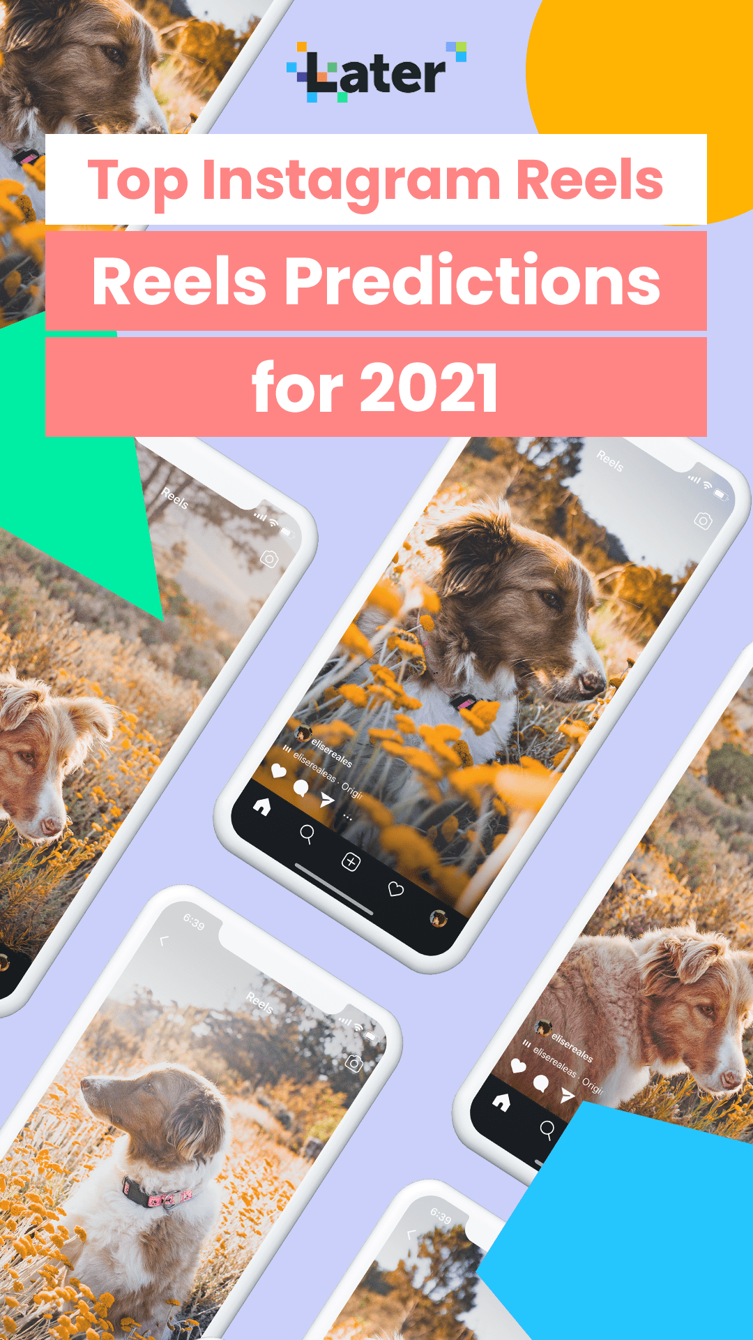 10 Instagram Reels Predictions For 2021 How To Prepare For Them Later Blog Instagram Algorithm Instagram Story Ads Instagram Creator