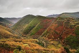 La Sierra está formada por pequeños valles a 250 metros sobre el nivel del mar, encajados entre picos que rondan los 2.000 metros de altitud