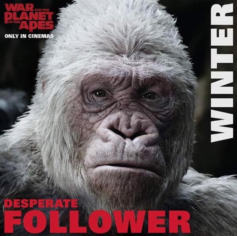 Archives Of The Apes Planet Of The Apes Apes Dawn Of The Planet