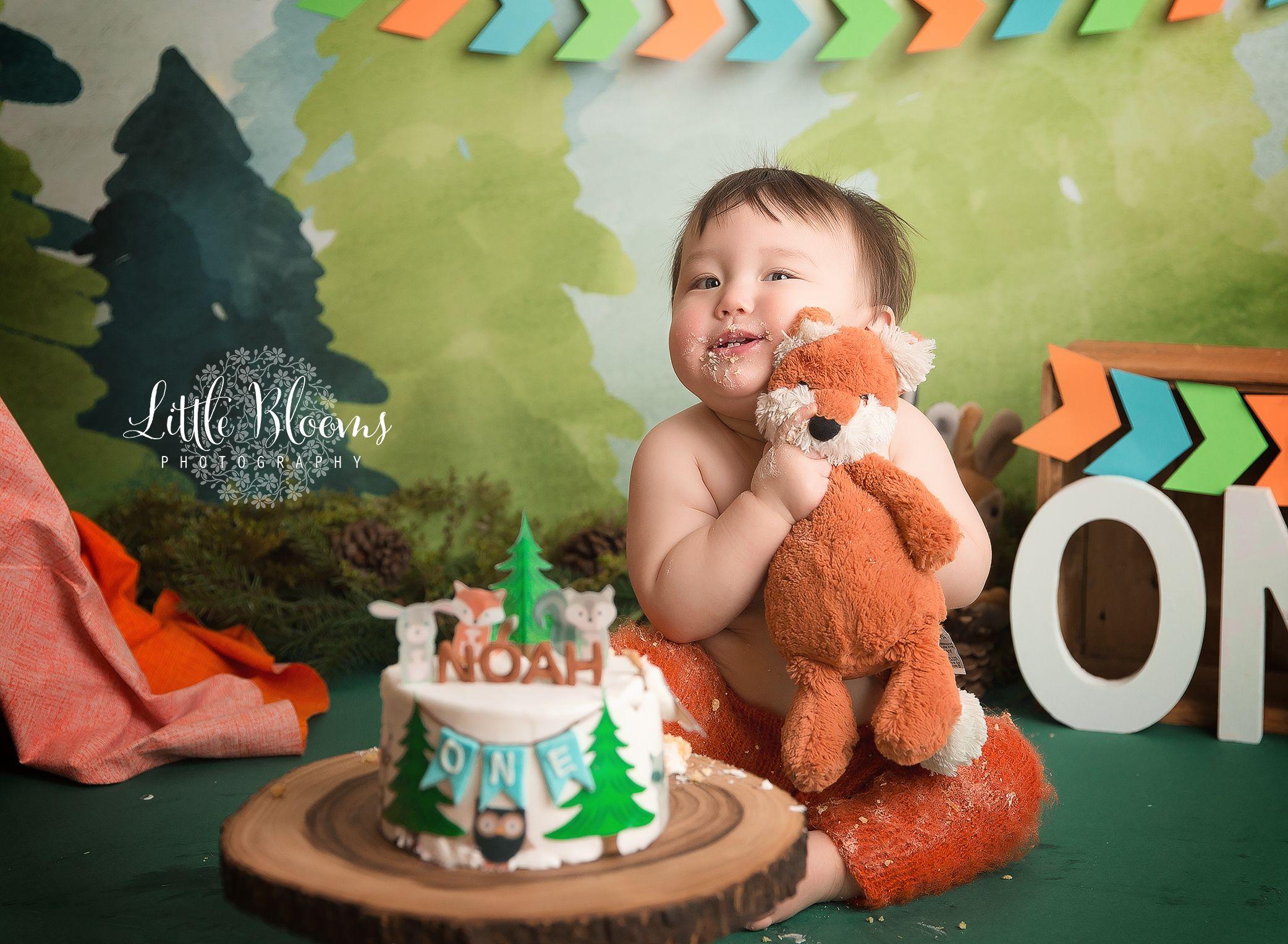 Colorful Woodland First Birthday Cake Smash Orange Blue