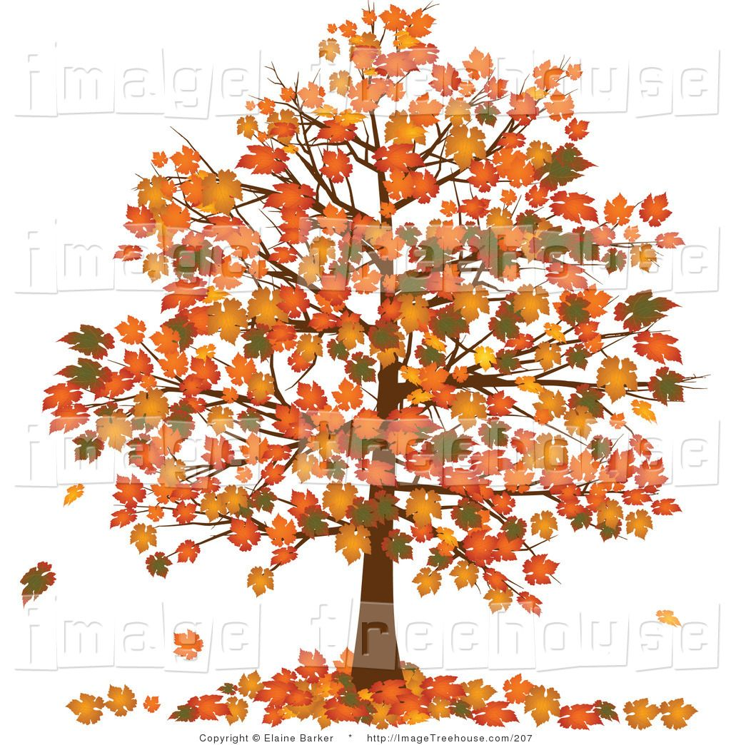Autumn Tree Clipart Wallpapers Clip Art