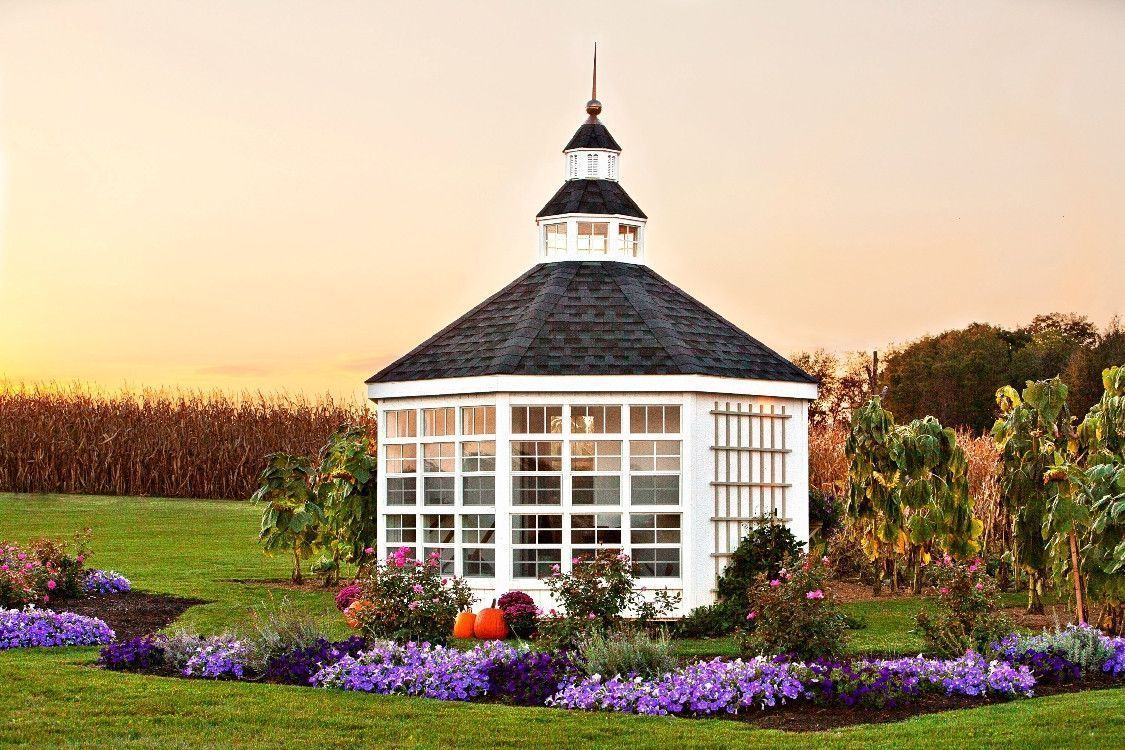 The Garden Shed Greenhouse #conservatorygreenhouse