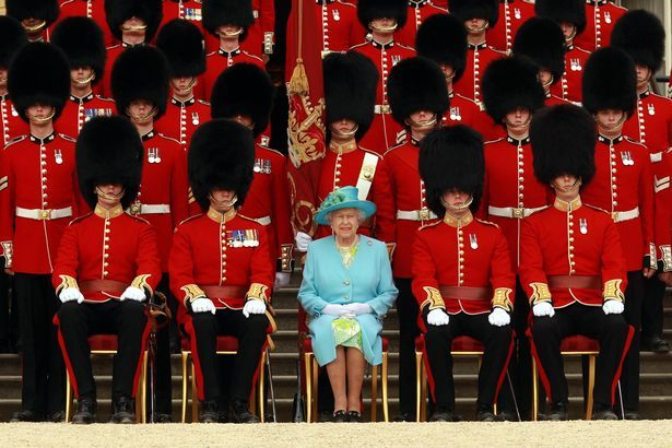 Poll Should Black Bears Be Killed For Royal Guards Fur Caps Focusing On Wildlife Grenadier Guards Nijmegen New Color