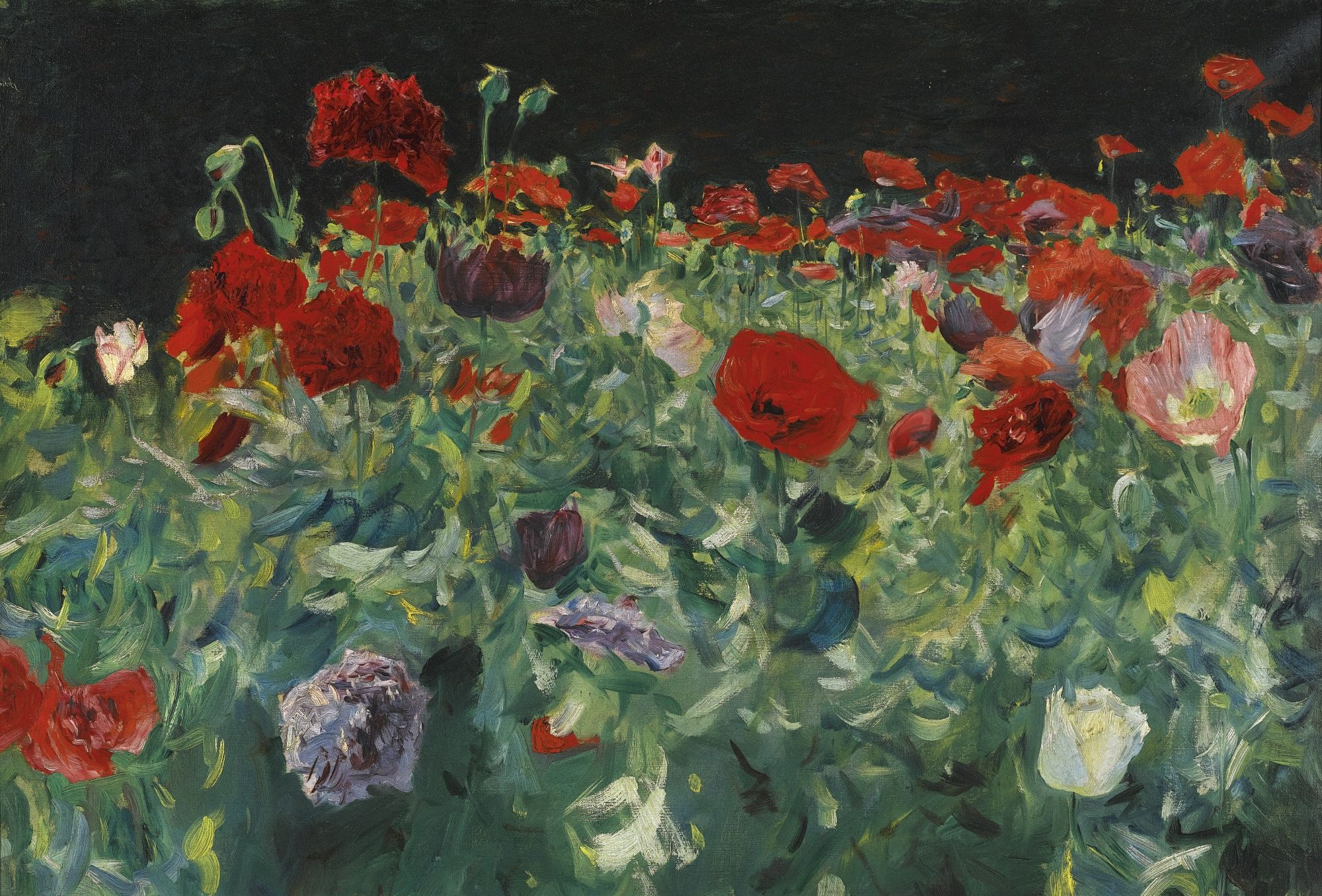 Poppies   by John Singer Sargent  Giclee Canvas Print Repro
