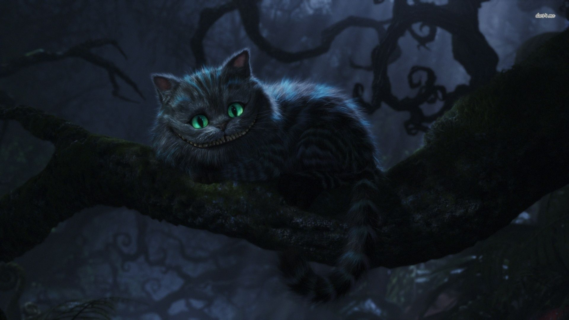 Cheshire Cat Wallpaper We Re All Mad Here Google Search