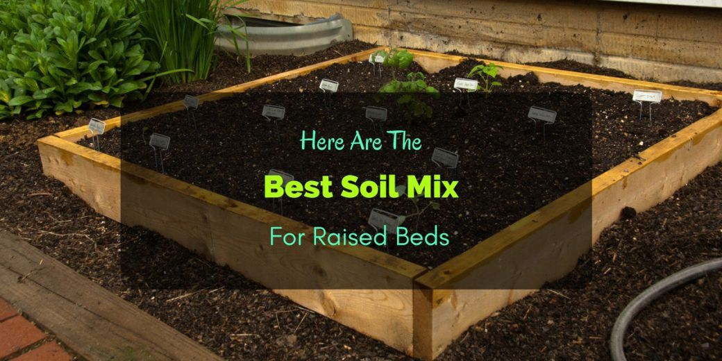 Here Are The Best Soil Mix For Raised Beds Raised garden