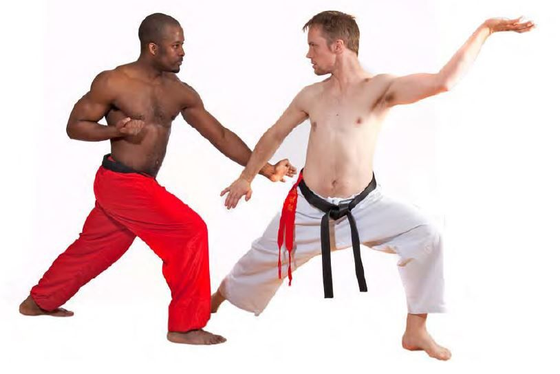 Kata Training | Sports article, Martial arts, Martial