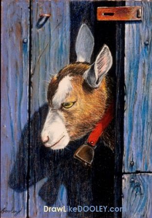 How To Draw Barn Wood Rusty Metal A Goat Online
