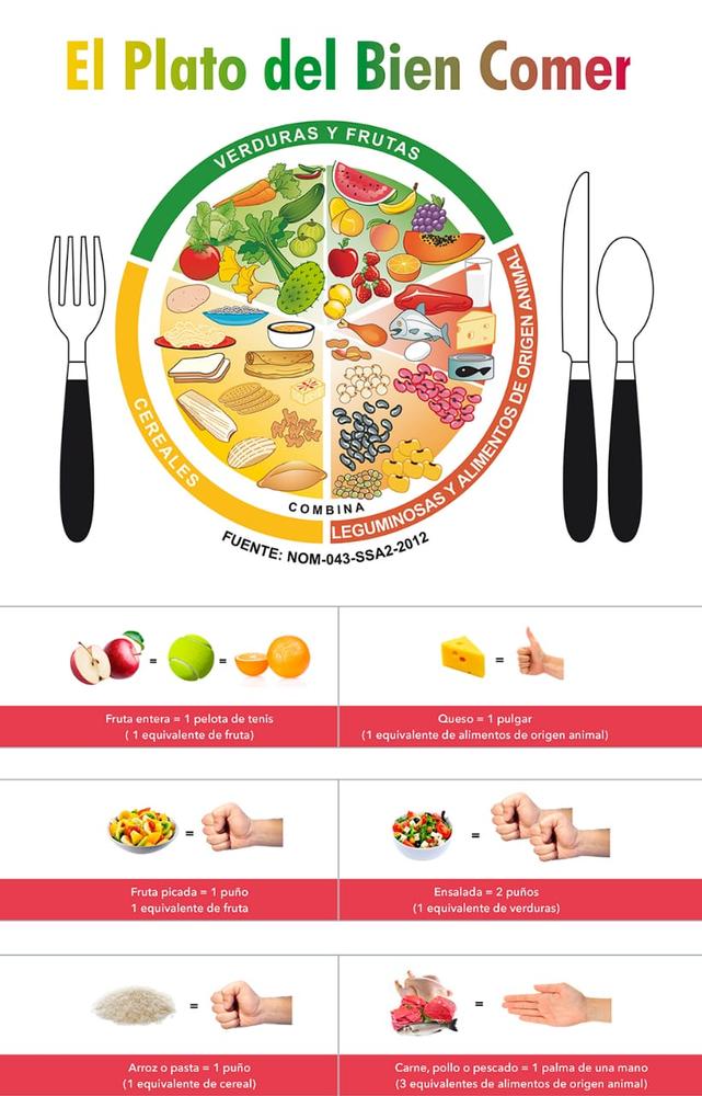 Aviso 380 Plato Del Buen Comer Plato Del Bien Comer Plato De Comida Saludable