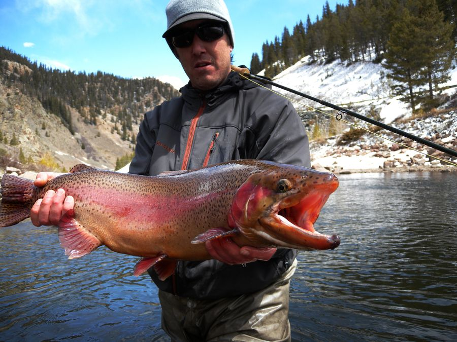 Taylor river monster fly fishing pinterest river for Taylor fly fishing