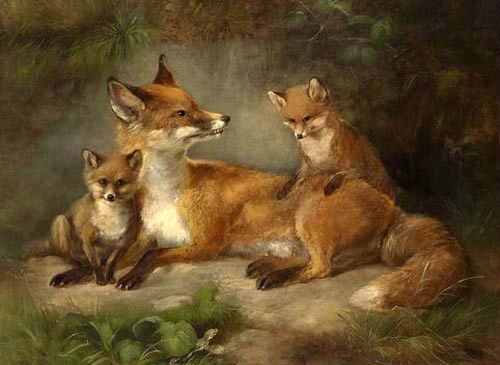 Wholesale-oil-painting-beautiful-wild-animals-foxes-family-no-framed-canvas