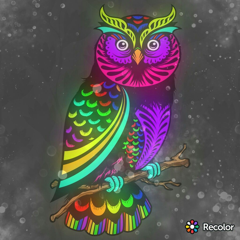 Coloring games like recolor -  Recolor Owl Artcoloring