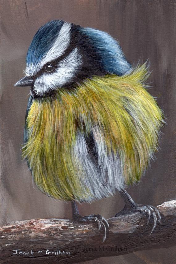 Ähnliche Artikel wie Vogel Kunst Malerei blau Tit Bar Wildlife Original handgemalte Vogel-Acr…