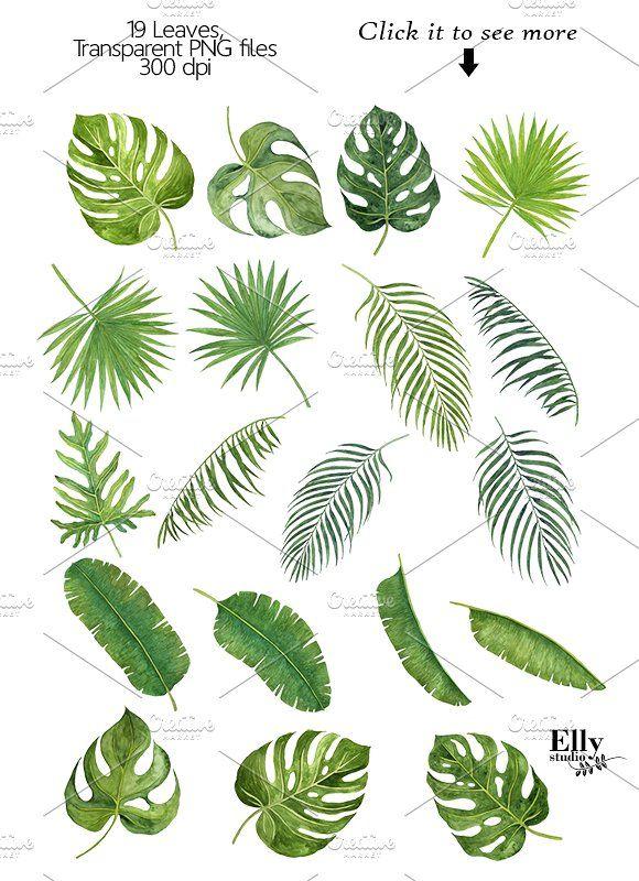 Tropical Leaves Quot Jpeg Hexagon Shapes Watercolor Plants Watercolor Leaves Painted Leaves