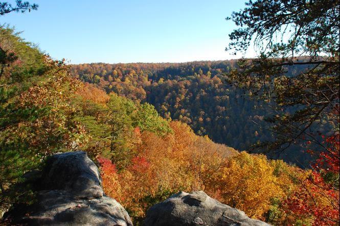 Great Article! Fall foliage drive, hike tour | Nooga.com