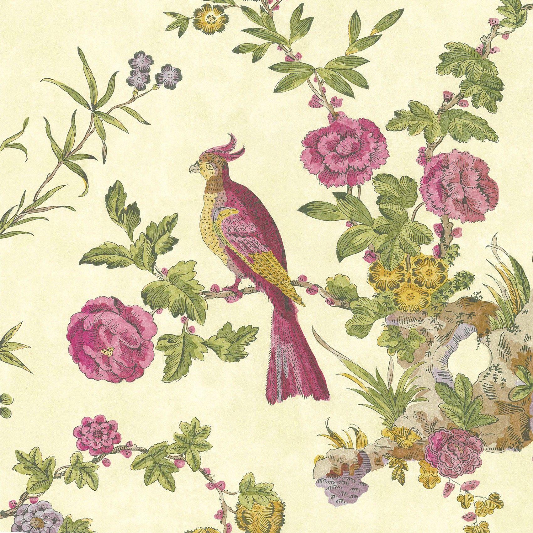 Darwin Jeune Bird wallpaper, Botanical wallpaper