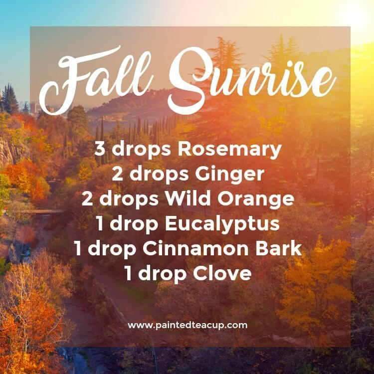 5 Must Try Fall Essential Oil Diffuser Blends - Painted Teacup