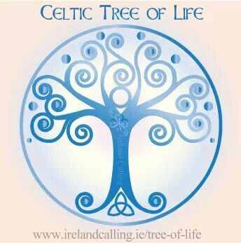Celtic Tree Of Life Tatuajes De Arbol Celta Arbol Celta