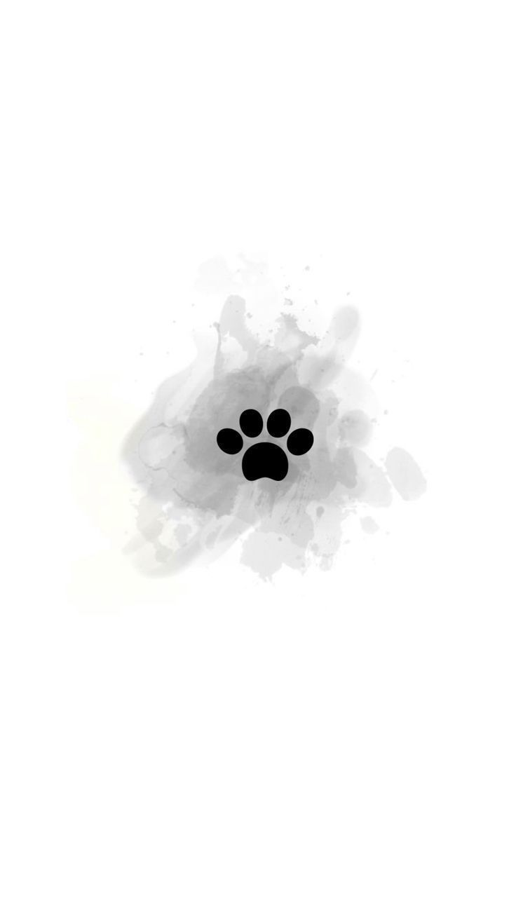 Instagram Highlight Cover Paw #kameras background, #instagramhighlights Instagram Highlight Cover