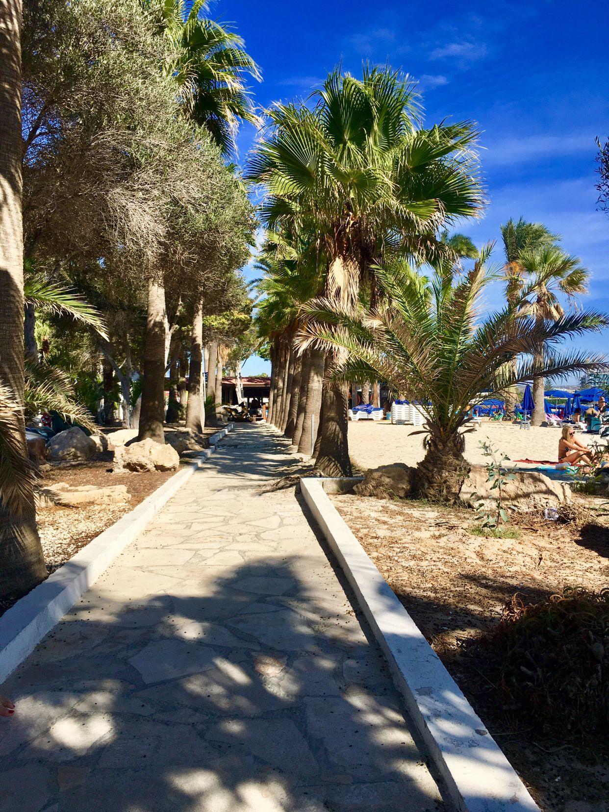 Beach wedding spots  Pin by Ellaaa Kit on The beach  Pinterest  Beach Nissi beach and