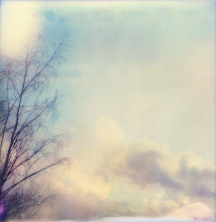 pale heavens