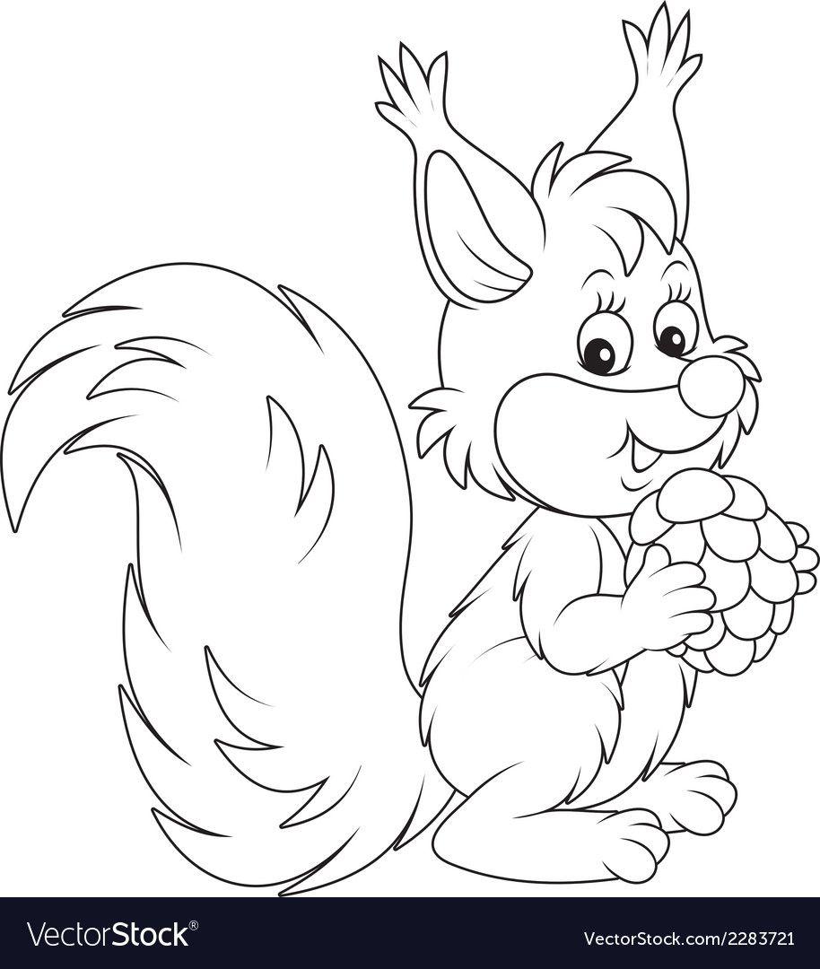 Squirrel vector image on VectorStock in 2020 Outline