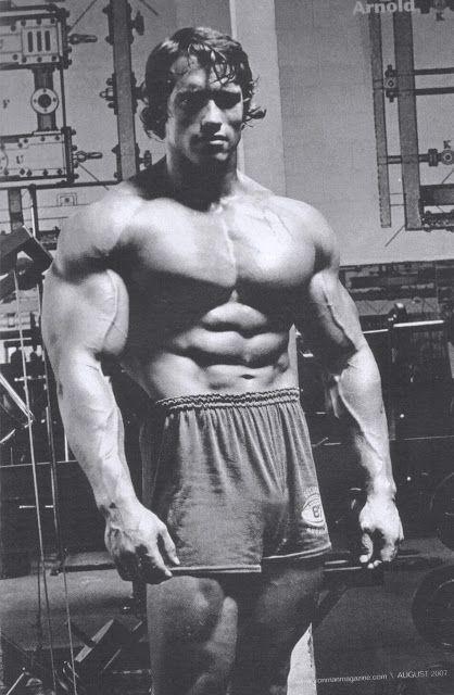 Arnold Wallpaper Download In 1080p High Resolution Schwarzenegger Bodybuilding Arnold Schwarzenegger Bodybuilding Arnold Schwarzenegger