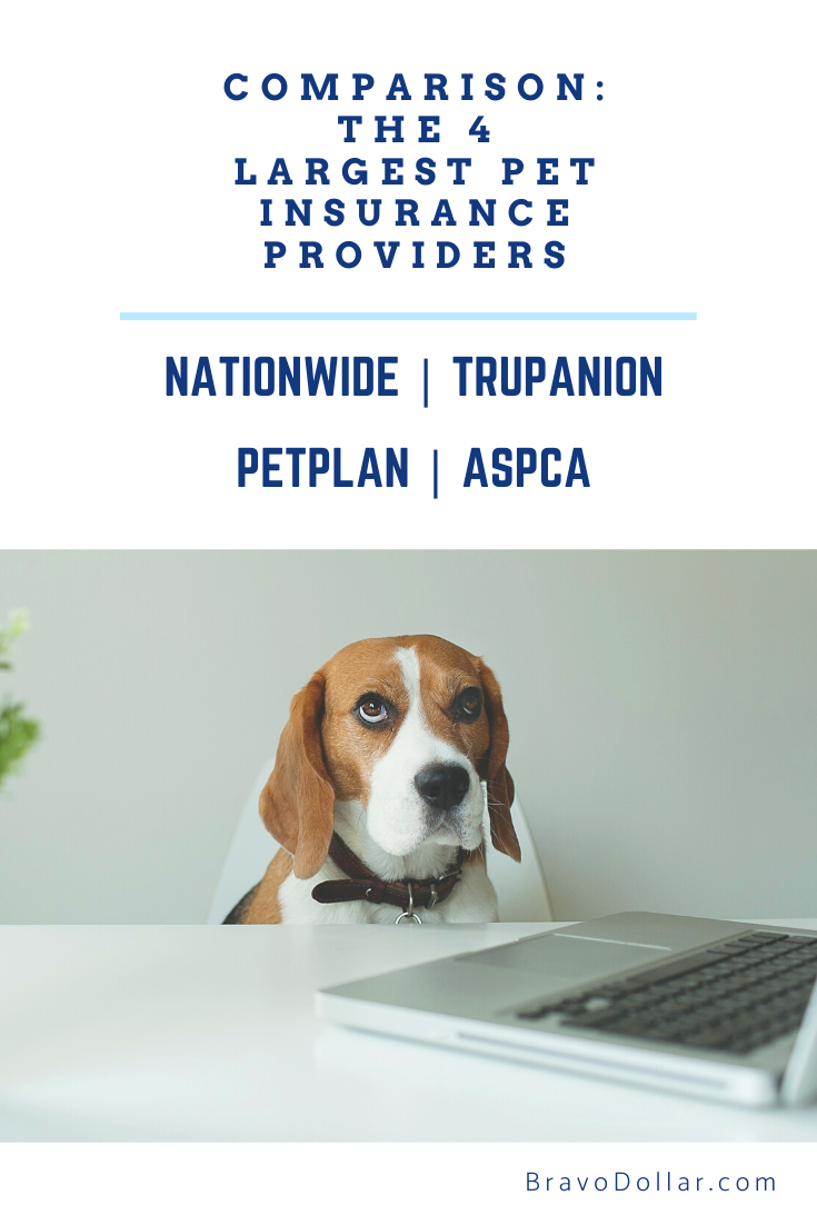 Compare The 4 Biggest Pet Insurance Companies With Images Pet Insurance Pet Plan Cat Insurance