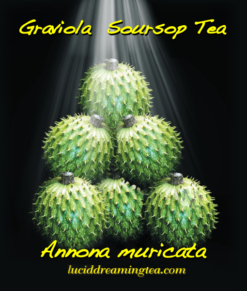 Organic Graviola or Soursop is known to attack Cancer safely without the effect of nausea, weight loss or Hair loss. It is the alternative to chemotherapy and 10,000 times stronger. Graviola can effectively target and kill malignant cells in 12 types of Cancer including Colon, Breast, Prostate, Lung and Pancreatic Cancer. Graviola only kills Cancer cells it does not kill healthy cells. I used light shinning down on the Graviola because it is a blessing to have a tea that can do so much good.