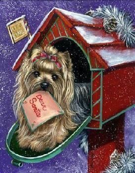 Funny 20yorkie Images On Photobucket Yorkie Christmas Dog Christmas Animals