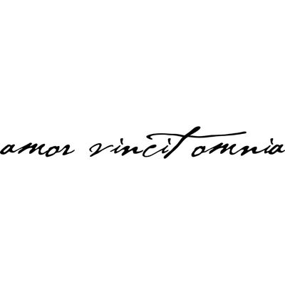 I Like The Font For This Amor Vincit Omnia Quote Tattoos Girls Amor Tattoo Upper Thigh Tattoos