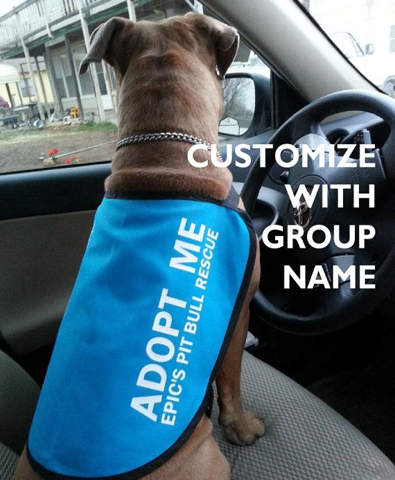 Custom Adopt Me Dog Jacket Vest Add Your Group 39 S Name Dog Jacket Adoption Dog Rescue Idea