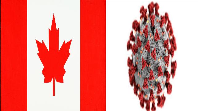 كندا تطالب المسافرين إليها بشهادة تثبت عدم إصابتهم بفيروس كورونا Country Flags Canada Flag Novelty