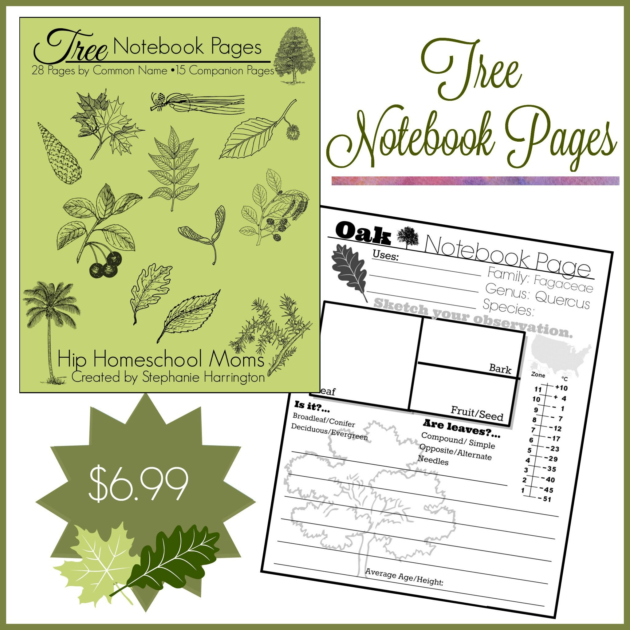 Tree Notebook Pages In