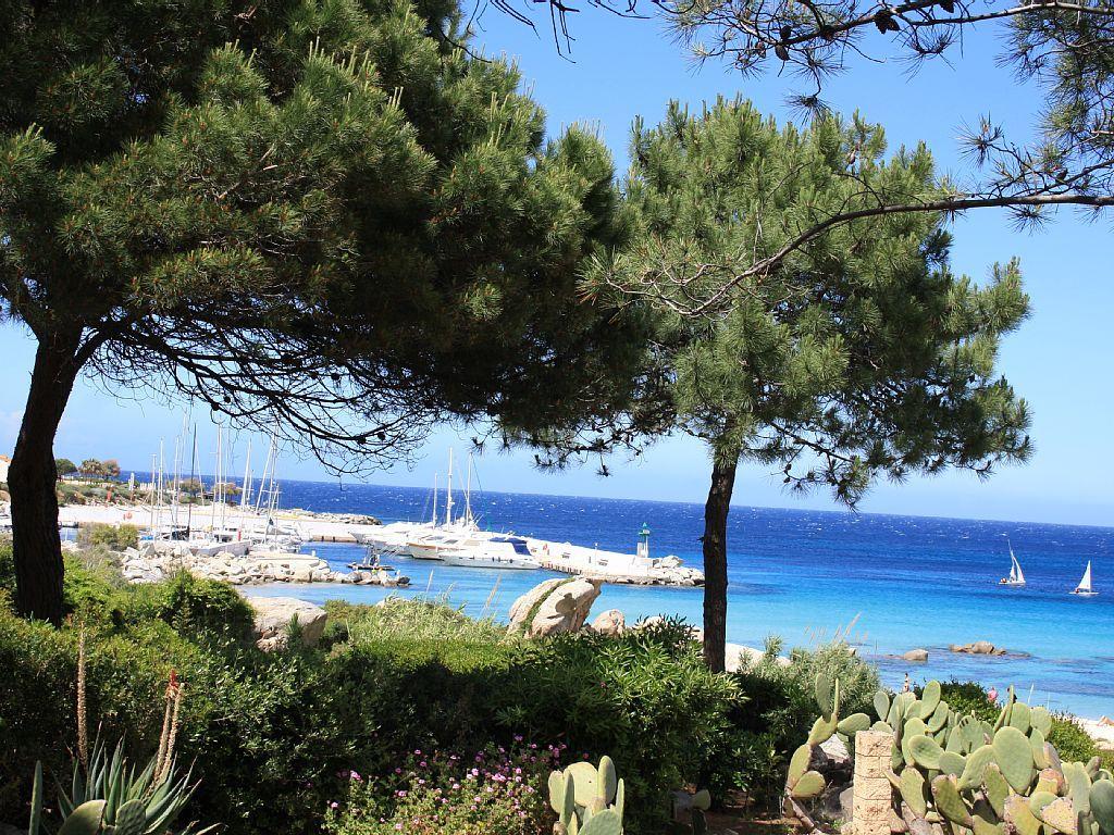 Location Vacances Studio Sant Ambroggio Port De Plaisance A 900m Du Studio Locations Vacances Petite Terrasse Ile Rousse