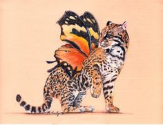 Butterfly leopard kitty.