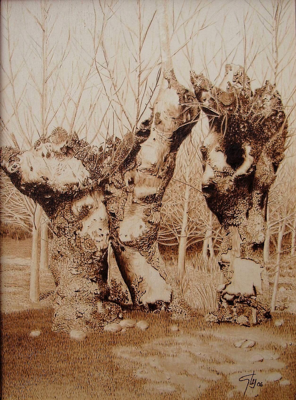 Artwork: Landscape by artist Juan Carlos Gonzales