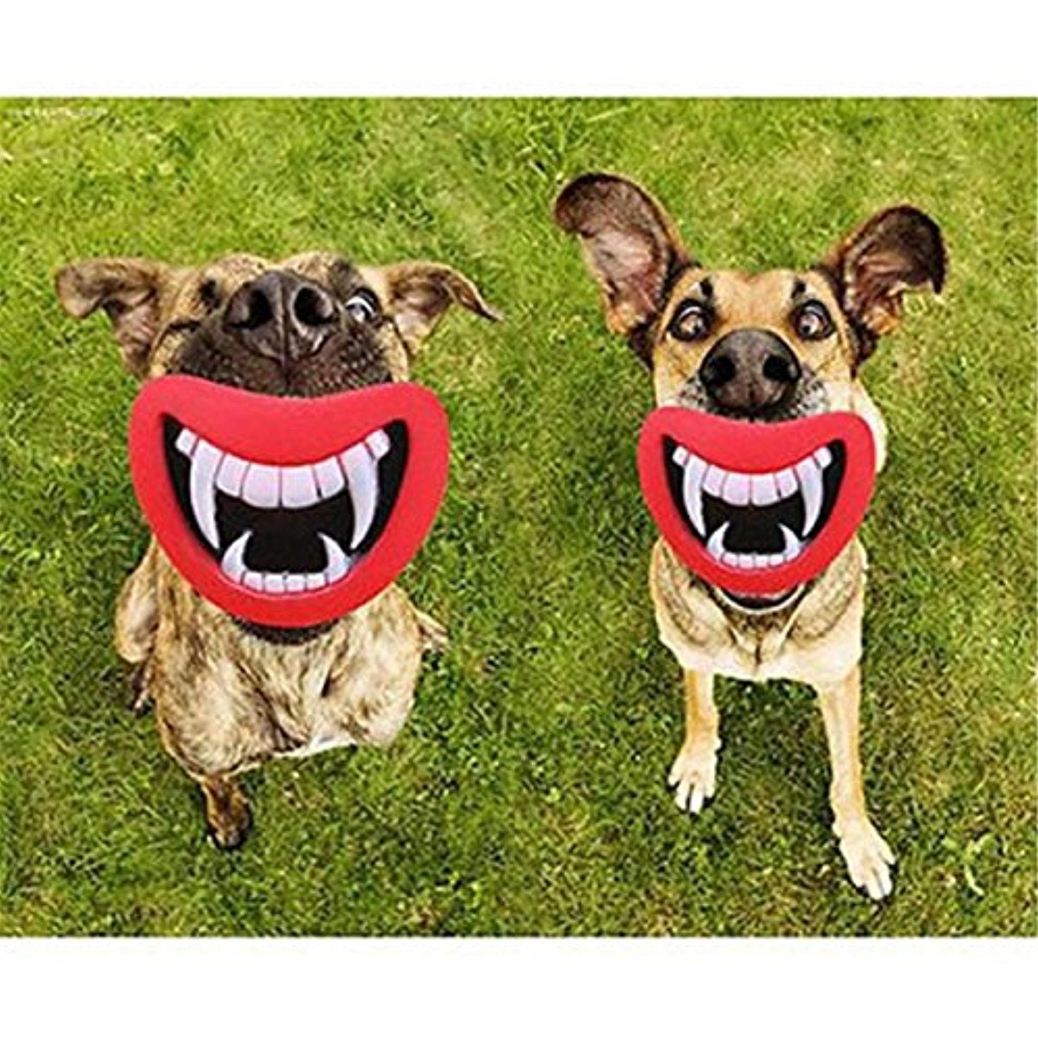 Funny pet dog teeth vinyl toy chew squeaky sound puppy dogs play