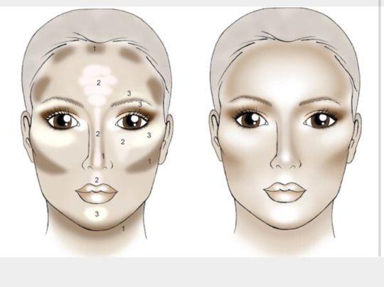 contour and highlight. makeup