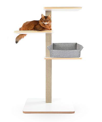 pin von annett behrend auf modern cat furniture. Black Bedroom Furniture Sets. Home Design Ideas