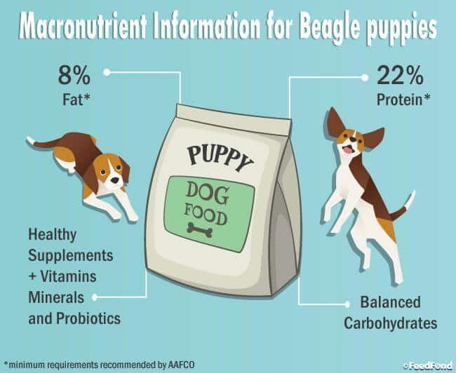 5 Best Dog Foods For Beagles In 2019 Dog Food Dog Food Recipes
