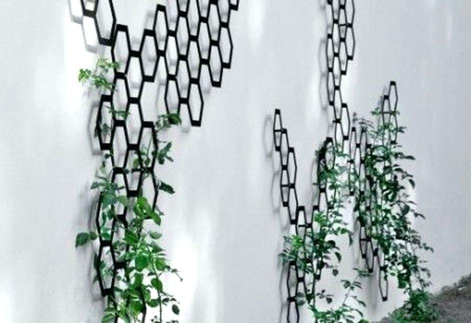 Ceiling Trellis Indoor Google Search Decorative Trellis Metal Trellis Indoor Vines