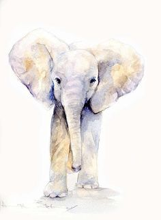 The David Sheldrick Wildlife Trust Art Store Love All The