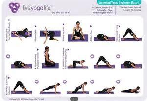 beginning yoga poses for seniors