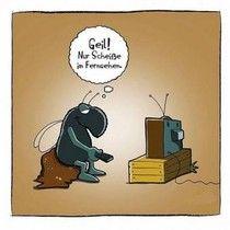 Fernsehprogramm morgen
